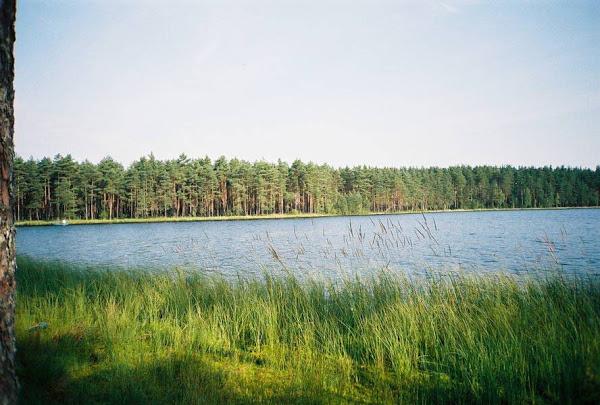 Озеро шугозеро рыбалка
